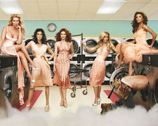 Desperate Housewives [Cast] (20977) 8x10 Photo