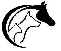 2 Aufkleber Hund  Katze Pferd  Auto Sticker Decal 12 x 10 cm Horse Cat Dog love