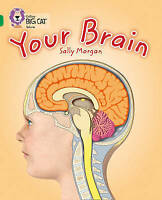 Your Brain. Band 15/Emerald by Morgan, Sally (Paperback book, 2013)