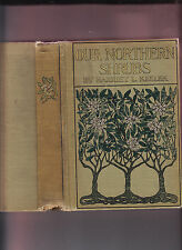 OUR NORTHERN SHRUBS & HOW TO IDENTIFY THEM-HARRIET KEELER-1910 ED ILLUS CLASSIC