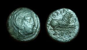 AE17 Kingdom of Macedonia Kassander (Herakles / Lion)