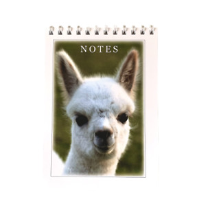 Alpaca Notebook - Writing/Lists/Drawing/Notes