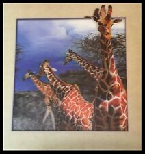 Giraffe Interactive 3D Picture Lenticular Print  Wall Art Decor