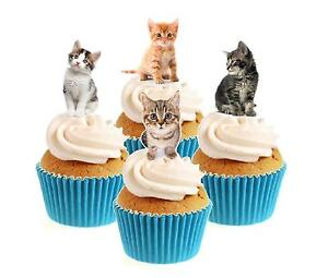 Novelty Cute Kitten Mix 12 Edible Stand Up wafer paper cake toppers birthday cat