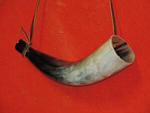 Large Blowing Horn Cow Horn 15 IN. Long Bull Horn Longhorn Steer Horns