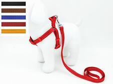 Wholesale 12 Pet Dog Cat Safe Control Walk Adjustable Harness With Leash Medium