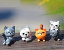 FD3539 Miniature Dollhouse Garden Craft Fairy Bonsai Decor Angry Cat Kitten~ 1PC
