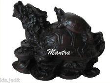 Tartaruga con testa di drago - Piccola - Feng Shui ZEN