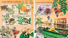 India Spices Flora Pflanzen Flowers Plants Guinea-Bissau MNH stamp set