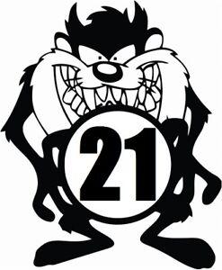LARGE taz 21x18 racing + any numbers car van bonnet vinyl graphic side sticker