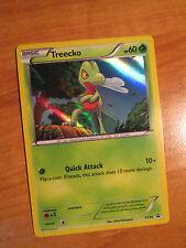 LP Pokemon TREECKO Card BLACK STAR PROMO Set XY36 Hoenn Collection Box XY Holo