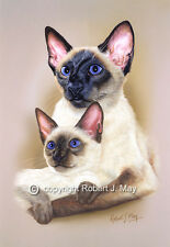 Siamese Cat and Kitten Print by Robert J. May