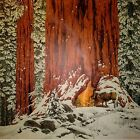 """BEV DOLITTLE """"CHRISTMAS DAY"""", 19X19"""" FULL SIZE EXAM PROOF, 1983 NEW MINT, w/NRS"""