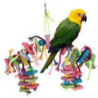 Large Parrot Pet Bird Toys Perch Budgie Cockatiel Chew Hanging Wooden Swing
