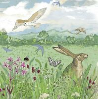 Meadow Wildlife Greetings Card - Shelly Perkins for Emma Ball, hare, birthday