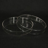 200mm Borosilicate Glass Petri Culture Dish with Lids For Lab Bacterial Yeast