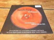 LAMBCHOP - Biographie promo / Promo biography !!! IS A WOMAN !!!