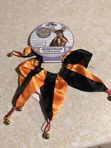 Rubies Pet Shop Boutique Halloween Orange & Black Jester Collar, Sizes M/L