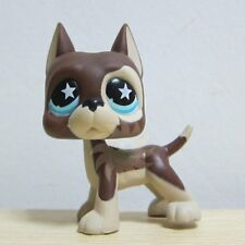 Hasbro Littlest Pet Shop LPS Figure Star Eyes Deep Brown Great Dane Puggy Dog