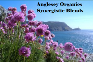 Synergistic Blends of Essential Oils all at 10ml size unless listed otherwise