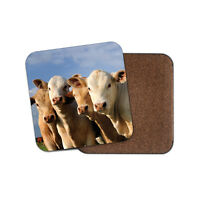 Cute Set of Cows Cork Backed Drinks Coaster - Cow Animal Farm Farmer #8249