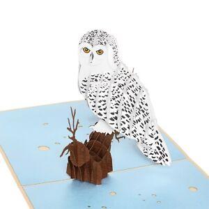 Owl Pop Up Card, Magical Owl Pop Up Card, Owl Card, Birthday Owl Card, Thank You