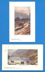 2 TUCKS OILETTE (PLATE-MARKED) POSTCARDS.LLYN PERIS,LLANBERIS & G.H.JENKINS