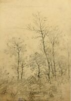 J.MAURER(1826-1887), Naturdarstellung, Schlanke Bäume im Herbst, Bleistiftzchng