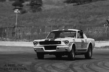 Ford Shelby GT350 R Mustang & Dick Carter –1965 winner Road America 500– photo 6