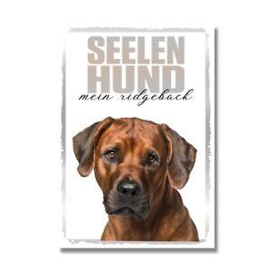 Ridgeback Seelenhund Dog Schild Spruch Türschild Hundeschild Warnschild Soulmate