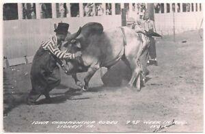 Postcard IA Sidney Iowa Championship Rodeo Clown Protection Athlete, Cowboy RPPC