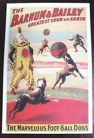Vintage Circus Advertising Poster Lithograph Barnum & Bailey Football Dogs 2002