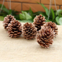 10PCS Christmas Pine Cones Baubles Xmas Tree Decorations Ornament Gift Decor OHK