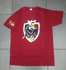 TEE-SHIRT FOOTBALL BELGIQUE BIERE BEER JUPILER COUPE MONDE FIFA 2010 RED DEVILS