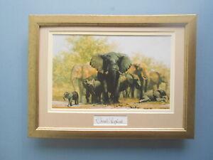 David Shepherd print 'Mud,Glorious Mud' Elephants -  original signature in mount