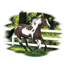 """PAINT HORSE called """"SPRING FEVER"""" FABRIC. ONE 18 x 22 inch Panel Pic is 11""""x14""""."""