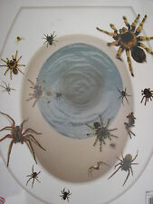 halloween spiders toilet seat cover sticker