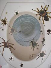 halloween ragni copriwater copriadesivo