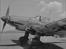 WW2 Photo WWII  German Luftwaffe Ju87 Stuka Dive Bomber  World War Two /6147