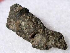 .253 grams CV3 Northwest Africa 3118 as found individual NWA CV3 Meteorite