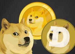 100 Doge Coin EXPRESS CRYPTO CLOUD MINING VERTRAG