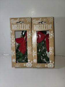 Lot of 2 Real Mistletoe Branch Bunch - Harvested & Packaged in USA G4