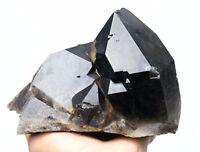 5.6LB Natural Beauty Rare Black Quartz Crystal Cluster Mineral Specimen