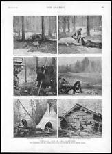 1895-Antiguo impresión Canadá Backwoods British Columbia kootway Turner (134)
