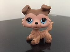 Littlest Pet Shop LPS #893 Collie Chocolate Cream Puppy Dog Blue Tear Drop Eyes