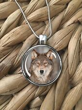 Red Wolf Wildlife Wolves Animal Lover Glass Pendant Silver Chain Necklace NEW