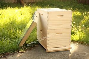 ASSEMBLED 8 FRAME BEE HIVE - NZ PINE BEEHIVE WITH WAX FOUNDATION READY TO GO