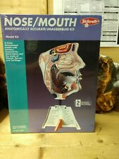 Skilcraft Science Anatomically Accurate Plastic Kit. Nose/Mouth