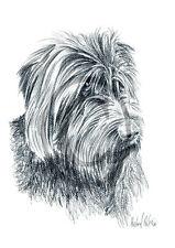 Griffon Korthals 02, stampa d'arte di un disegno di carbone, 30 x 21 CM, cani