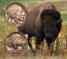 ✯ 1913-1938 Buffalo Nickels ✯